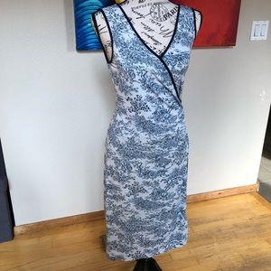 BCBG Maxazria Toile French Pastoral Bodycon Dress
